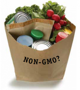 gmo-genetically-modified
