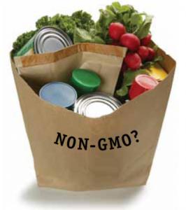gmo-genetically-modified